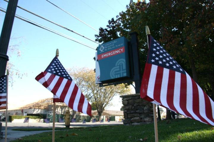 US Flags SVMHS