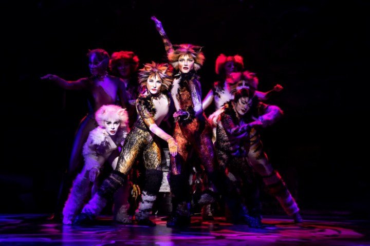 The North American Tour Company of CATS. Photo by Matthew Murphy. 2019 (1)
