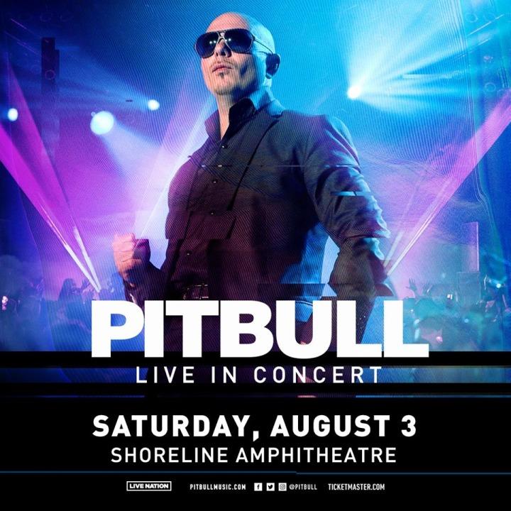 pitbull aug 2019